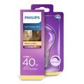 Bombilla LED regulable VINTAGE Philips E27/5,5W/230V 2700K