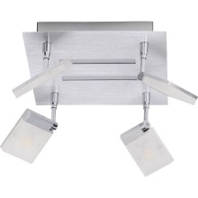 Brilliant - Foco LED PLAXICO 4xLED/6W/230V