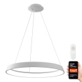 Immax NEO 07079L - LED Lámpara colgante regulable LIMITADO LED/39W/230V 60 cm+CR Tuya