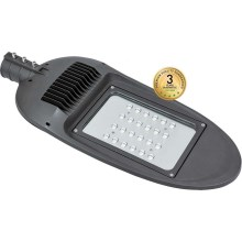 LED Iluminación exterior BOSTON LED/100W/230V IP65